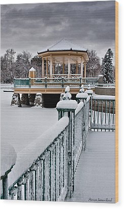 Wood Print featuring the photograph Winter Gazebo by Steven Reed