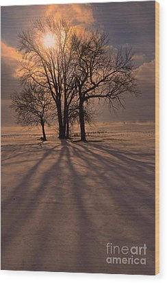 Winter Glory Wood Print