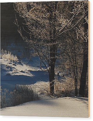 Wood Print featuring the photograph Winter Glow by Mim White