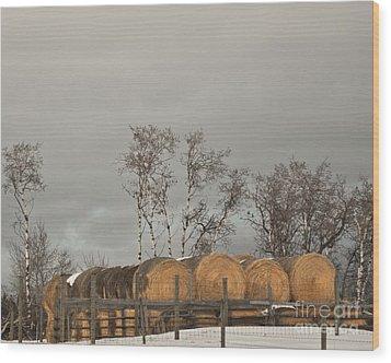 Winter Gold Wood Print by Sandi Mikuse