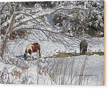 Winter Graze Wood Print