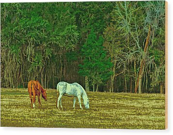 Winter Grazing In North Florida Wood Print