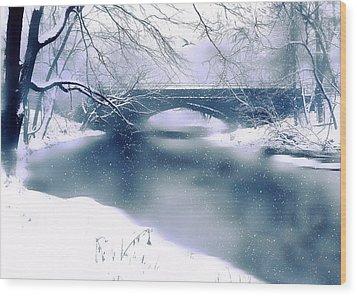 Winter Haiku Wood Print by Jessica Jenney