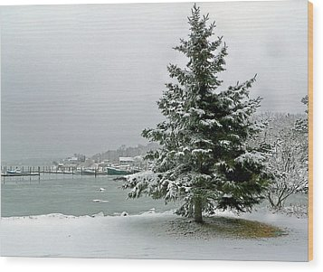 Winter Harbor Scene Wood Print by Janice Drew