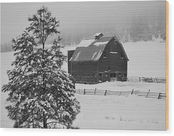 Winter Haven Wood Print by Duane King