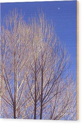 Winter High Node Wood Print by Gem S Visionary