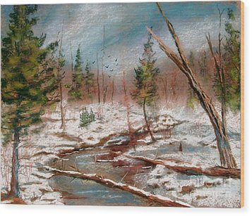 Winter In Canane Wood Print by Bruce Schrader