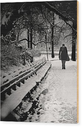 Winter In Central Park Wood Print by Madeline Ellis