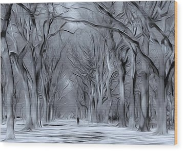 Winter In Central Park Wood Print by Nina Bradica
