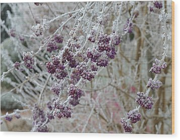 Wood Print featuring the photograph Winter In Lila by Felicia Tica