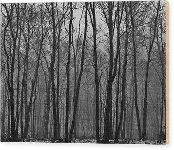 Winter In Pennsylvania Wood Print by Benjamin Yeager