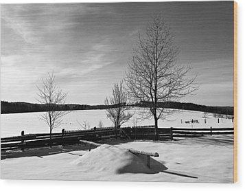 Winter In Roztocze Wood Print by Tomasz Dziubinski