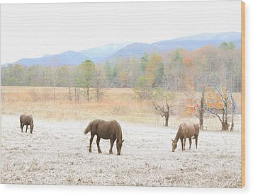 Winter In The Cove Wood Print by Gene Smith