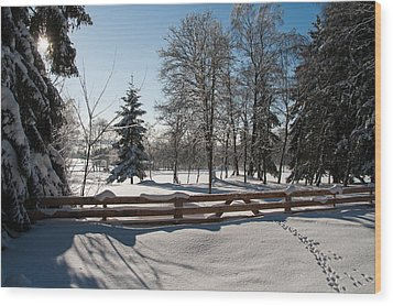 winter in the Harz area Wood Print by Andreas Levi