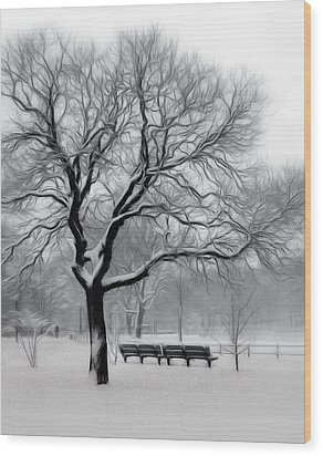 Wood Print featuring the digital art Winter In The Park by Nina Bradica