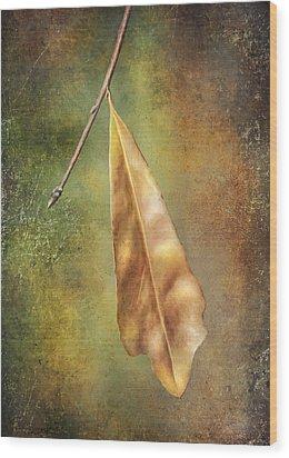 Winter Is Coming Wood Print by Brenda Bryant