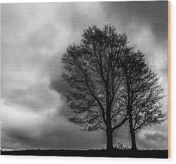 Winter Is Here Wood Print by Tim Buisman