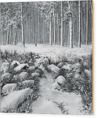 Winter Is Here Wood Print by Vladimir Kholostykh