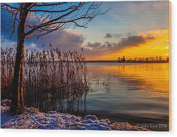 Winter Lake Sunset With A Tree Lighted In Red And Orange  Wood Print by Julis Simo