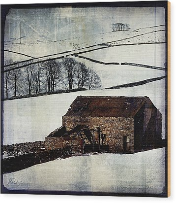 Winter Landscape 1 Wood Print by Mark Preston
