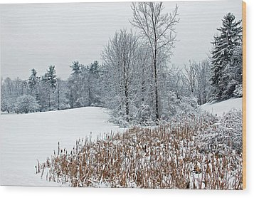 Winter Landscape Wood Print by Aimee L Maher Photography and Art Visit ALMGallerydotcom