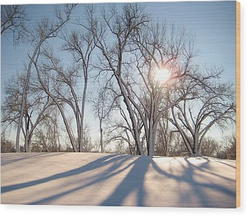 Wood Print featuring the photograph Winter Landscape by Alicia Knust
