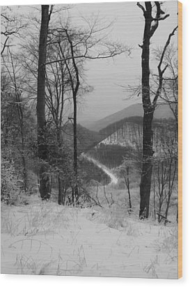 Winter Landscape Wood Print by Eva Csilla Horvath