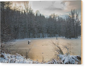Winter Landscape With Frozen Lake And Warm Evening Twilight Wood Print by Matthias Hauser