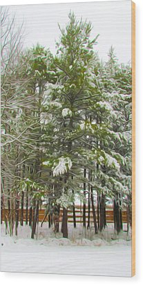 Winter Landscapes Wood Print by Lanjee Chee