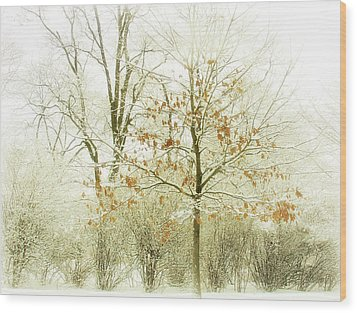 Winter Leaves Wood Print by Julie Palencia