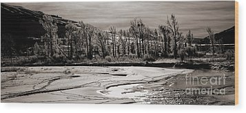 Wood Print featuring the photograph Winter Light by J L Woody Wooden