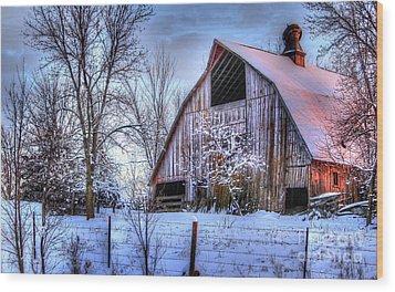 Winter Light Wood Print by Thomas Danilovich