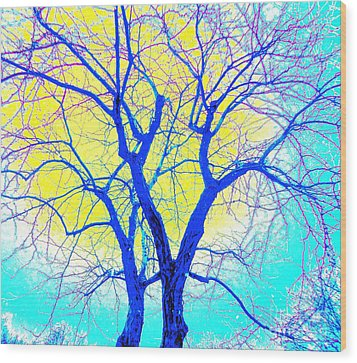Winter Marriage Of Two Trees Wood Print by Ann Johndro-Collins