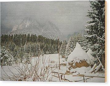 Winter Mood Wood Print by Cristina-Velina Ion