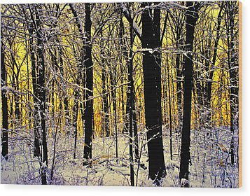 Winter Mood Lighting Wood Print by Frozen in Time Fine Art Photography