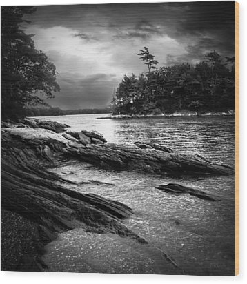 Winter Moonlight Wolfes Neck Woods Maine Wood Print by Bob Orsillo