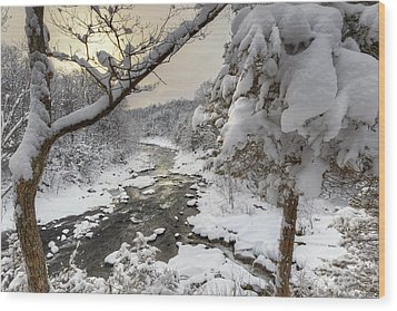 Winter Morning Wood Print by Bill Wakeley