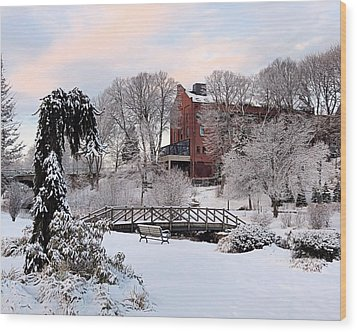 Winter Morning Color Wood Print by Janice Drew