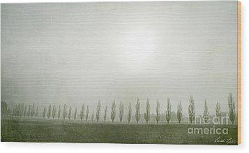 Winter Morning Londrigan 7 Wood Print by Linda Lees