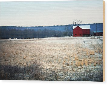 Winter Morning  Wood Print by Meaghan Troup