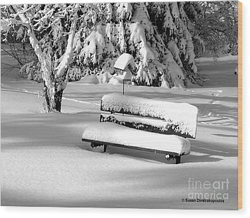 Wood Print featuring the photograph Winter Morning by Susan  Dimitrakopoulos