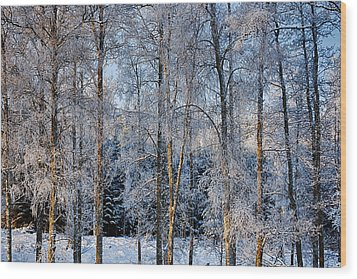 Winter Nature Ans Scenery Wood Print