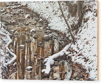 Winter - Natures Harmony Wood Print by Mike Savad