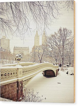 Winter - New York City - Central Park Wood Print by Vivienne Gucwa