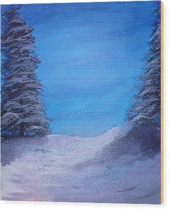 Winter Night Wood Print by Dan Haley