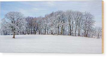 Winter Oak Wood Print by David Birchall