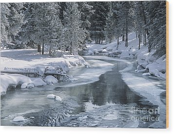 Winter On The Firehole River - Yellowstone National Park Wood Print by Sandra Bronstein