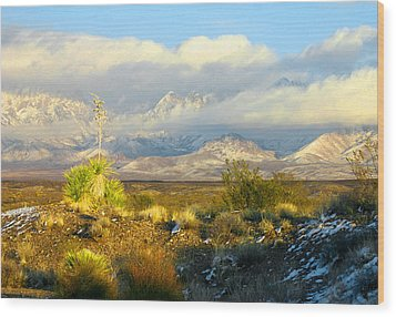 Winter In The Organ Mountains Wood Print by Jack Pumphrey