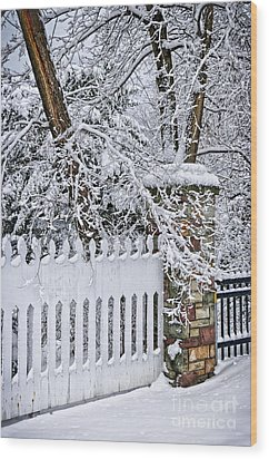 Winter Park Fence Wood Print by Elena Elisseeva