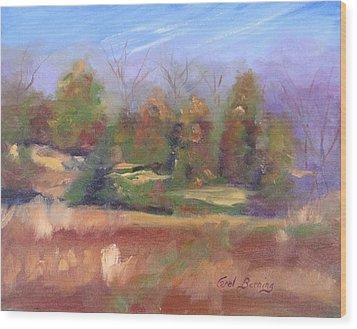 Winter Pasture Wood Print by Carol Berning